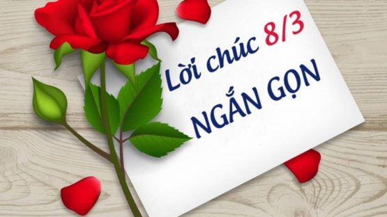 Loi Chuc 8 3 Ngan Gon